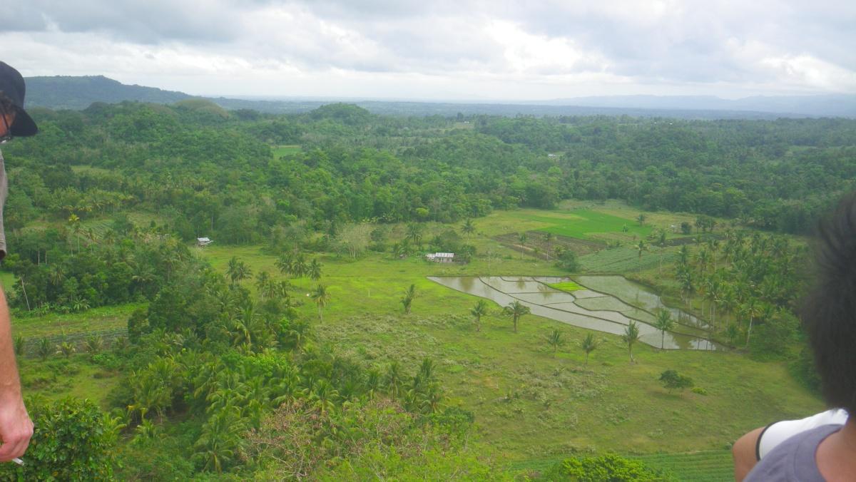Bohol2
