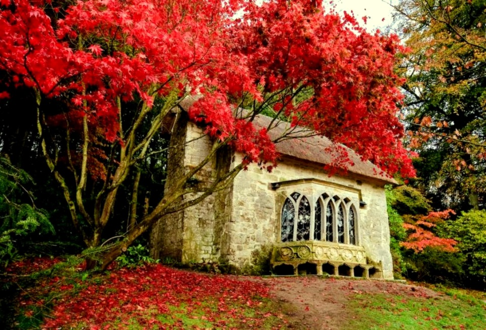 cottage-at-dorine-widescreen-high-resolution-wallpaper-download-cottage-images-free