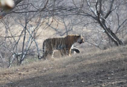 India 12450