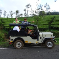 Thekkady Jeep Safari
