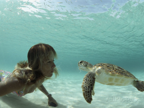 bill-curtsinger-a-young-woman-swimming-face-to-face-with-a-green-sea-turtle