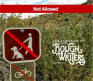 not-allowed